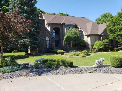 West Bloomfield Twp Single Family Home For Sale: 5422 Windham Hill Court