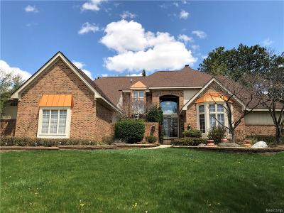 Rochester, Rochester Hills Single Family Home For Sale: 6351 Cherry Tree Court