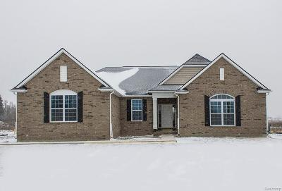Macomb Twp Single Family Home For Sale: 55072 Wolverine Drive