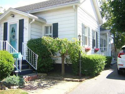 Belleville Single Family Home For Sale: 233 N Liberty Street