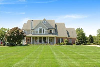 White Lake, White Lake Twp Single Family Home For Sale: 3120 Long Lane