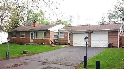 West Bloomfield, West Bloomfield Twp Single Family Home For Sale: 4163 Forbush Avenue