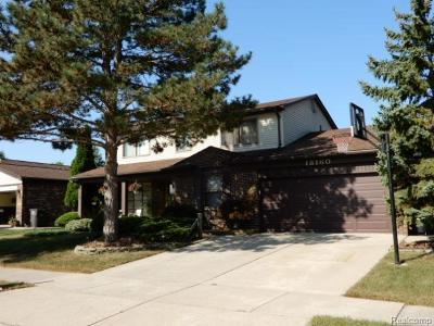 Riverview Single Family Home For Sale: 18160 Parkridge Drive