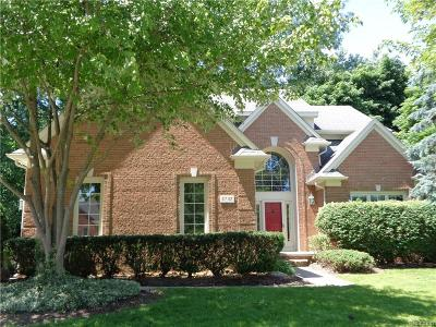 Rochester, Rochester Hills Single Family Home For Sale: 3732 Greenwood