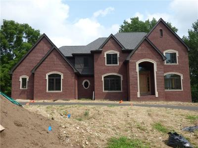 Bloomfield Twp Single Family Home For Sale: 6967 Spruce Hill Court