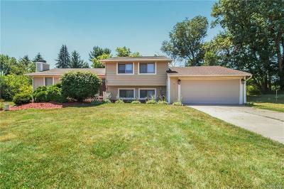White Lake, White Lake Twp Single Family Home For Sale: 3090 Ripple Way