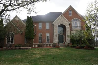Rochester, Rochester Hills Single Family Home For Sale: 2043 Hickory Trail