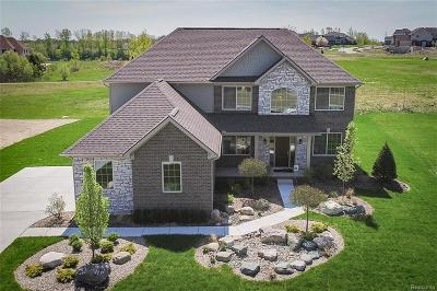 Oxford Single Family Home For Sale: 386 Overlook Drive