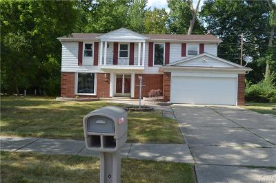 Southfield Single Family Home For Sale: 21180 Virginia Street