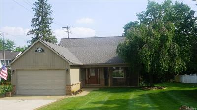 Northville MI Single Family Home For Sale: $374,900