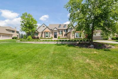Rochester, Rochester Hills Single Family Home For Sale: 5879 Murfield Drive