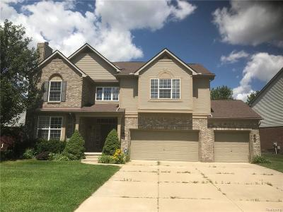 Northville MI Single Family Home For Sale: $449,900