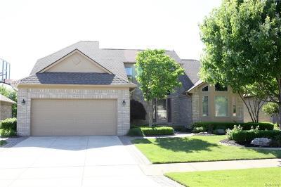 Macomb Twp Single Family Home For Sale: 54331 Mark Richard Drive