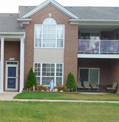 Macomb Twp Condo/Townhouse For Sale: 16405 Chatham Drive