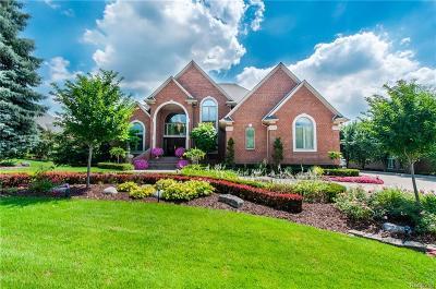 Washington Twp MI Single Family Home For Sale: $949,900