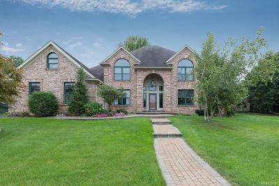 Lake Orion, Orion Twp, Orion Single Family Home For Sale: 4598 Windmill Court