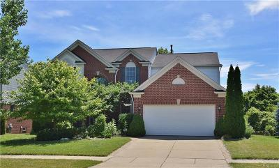 Rochester, Rochester Hills Single Family Home For Sale: 632 Bliss Drive