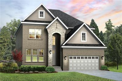 Northville Single Family Home For Sale: 47796 Fieldstone Drive