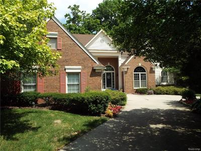 Novi MI Single Family Home For Sale: $525,000