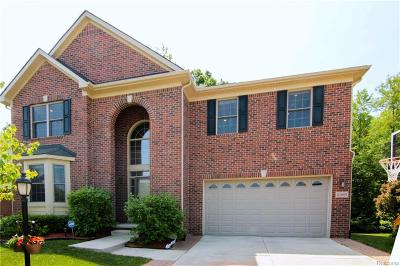 Novi Single Family Home For Sale: 41691 Steinbeck Glenn