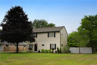 Rochester, Rochester Hills Single Family Home For Sale: 2700 Culbertson Avenue