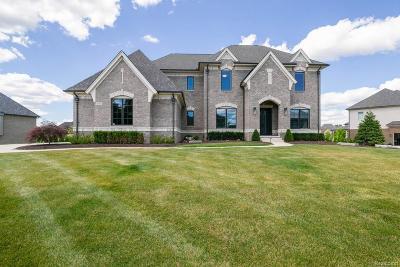 Oakland Twp Single Family Home For Sale: 3753 Bridport Lane