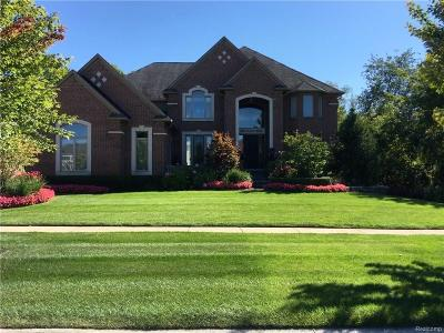 Rochester Hills Single Family Home For Sale: 1540 Clear Creek Drive N