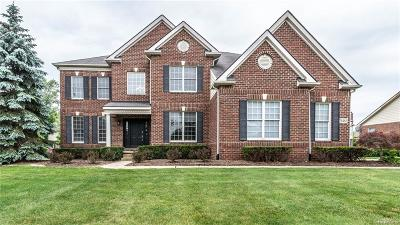 Novi Single Family Home For Sale: 26465 Crestwood Drive
