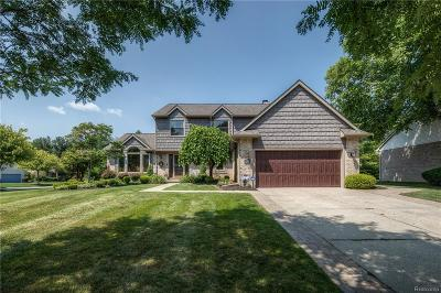 Novi Single Family Home For Sale: 42636 Wimbleton Way