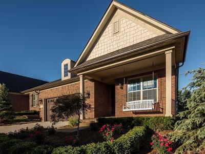 Auburn Hills Single Family Home For Sale: 4107 Ashton Drive