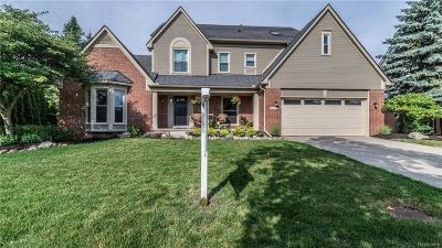 Novi Single Family Home For Sale: 45607 Irvine Drive