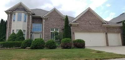 Rochester Hills Single Family Home For Sale: 2056 Somerville