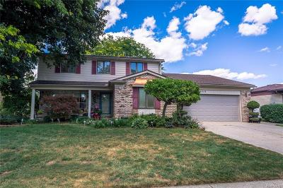 Sterling Heights Single Family Home For Sale: 14319 Four Lakes Drive