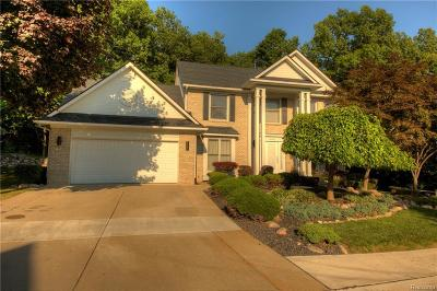 Farmington, Farmington Hills Single Family Home For Sale: 28080 Golf Pointe Boulevard