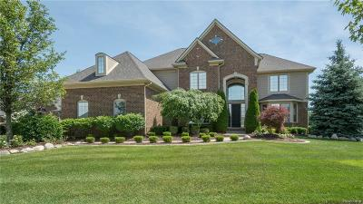 Northville Single Family Home For Sale: 48260 Four Seasons Boulevard