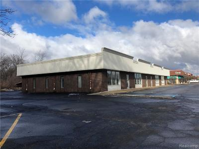 Commercial For Sale: 4175 E Highland Highway S
