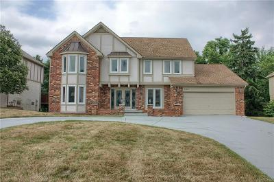 Farmington Hills Single Family Home For Sale: 31217 Country Ridge Circle