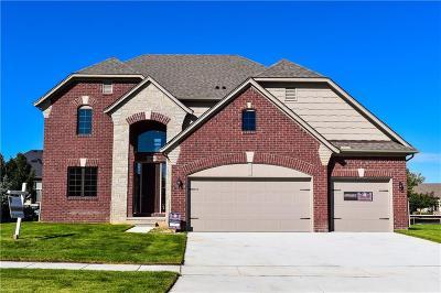 Macomb Twp Single Family Home For Sale: 19459 Hamlin Lake Drive