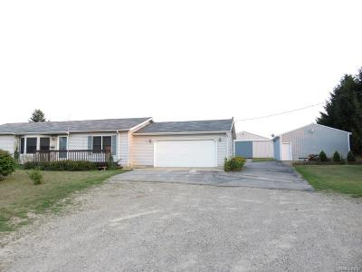 Livingston County Single Family Home For Sale: 7387 Lovejoy Road