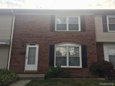 Belleville-vanbure, Van Buren, Van Buren Twp Condo/Townhouse For Sale: 13149 Lake Point Boulevard