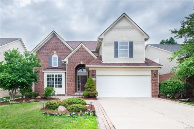 Northville Twp Single Family Home For Sale: 16405 Ridgewood Court