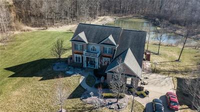 Canton Single Family Home For Sale: 8105 Endicott Lane