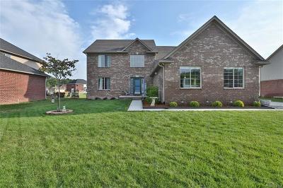 Flat Rock Single Family Home For Sale: 23890 Scott Avenue