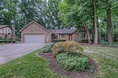 Livonia Single Family Home Sold: 15882 Blue Skies Drive