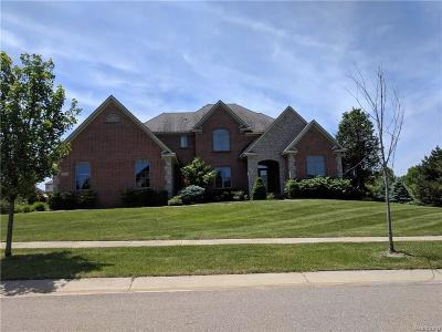 Northville Single Family Home For Sale: 16903 Horseshoe Drive