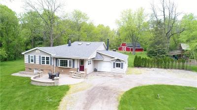 Auburn Hills Single Family Home For Sale: 1250 N Lake Angelus Road