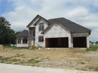 Macomb Twp Single Family Home For Sale: 21951 Rivanna