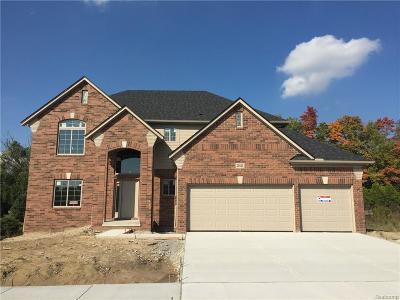 Macomb Twp Single Family Home For Sale: 21821 Rio Grande Drive