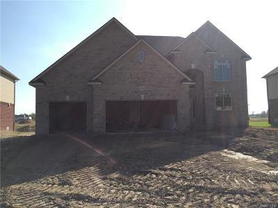 Macomb Twp Single Family Home For Sale: 21932 Rio Grande Drive
