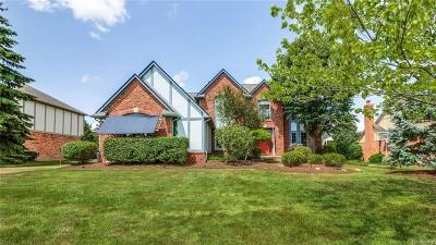 Troy Single Family Home For Sale: 1562 Hamlet Drive